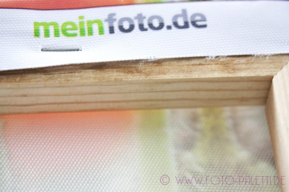 meinfoto9
