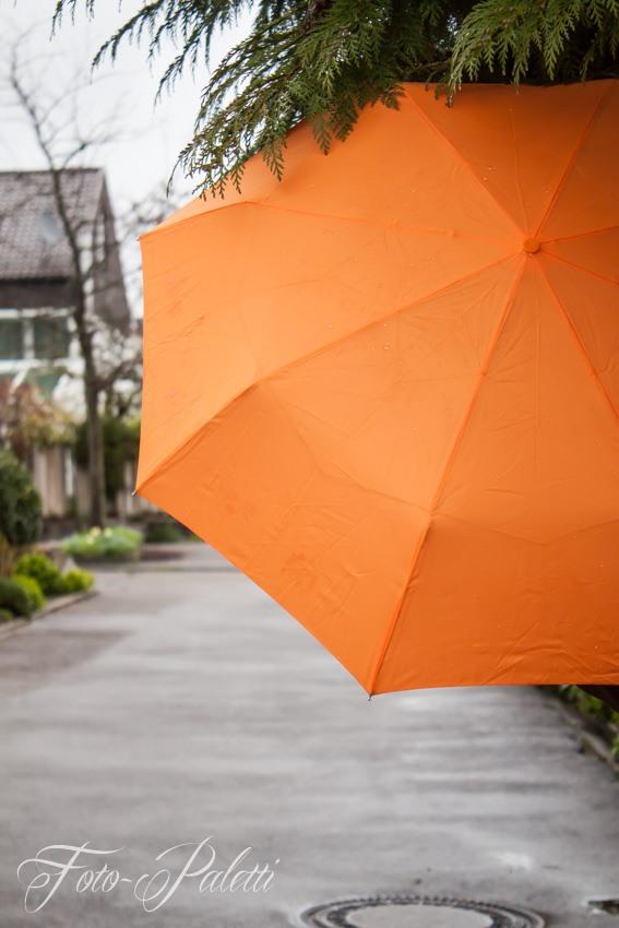 Regenschirm als Farbtupfer