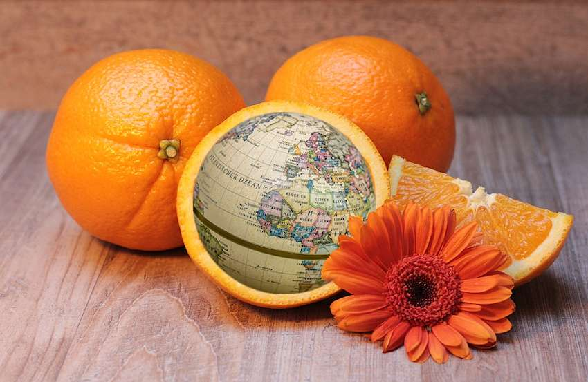 kreativität orangenglobus